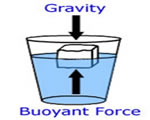 Chap 3: Forces in Fluids